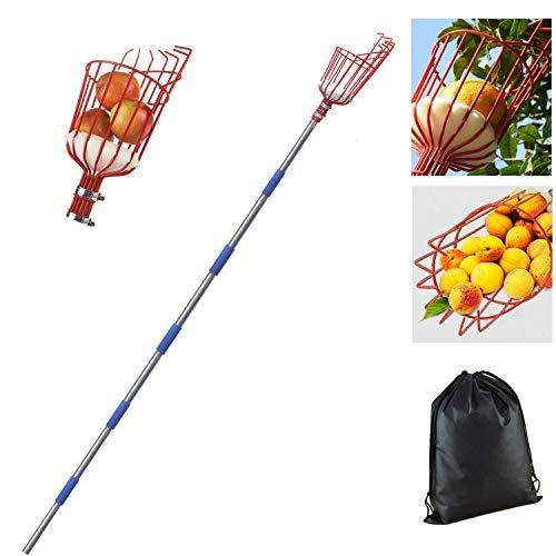 BOYO Obstpflücker mit Teleskopstiel aus 12 fuß leichtem Aluminium-Teleskoppfahl, Apfelpflücker mit Gelenk und Schaumstoffauflage, Greifer mit Korb für Obst Apfel Orange