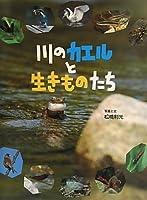川のカエルと生きものたち