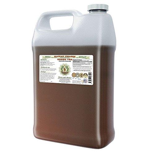 Green Tea Alcohol-Free Liquid Extract, Green Tea (Camellia Sinensis) Dried Leaf Glycerite Hawaii Pharm Natural Herbal Supplement 64 oz