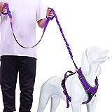 AdventureMore No-Pull Dog Harness Leash Set, Overhead No-Choke Reflective Safety Breathable Sport Vest