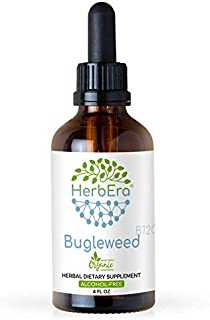 Bugleweed B120 Alcohol-Free Herbal Extract Tincture, Super-Concentrated Organic Bugleweed (Lycopus Virginicus) (4 fl oz)