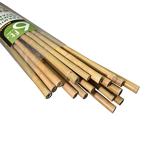 Mininfa Natural Bamboo Stakes 6 Feet, Eco-Friendly Garden Stakes, Plant Stakes Supports Climbing for Tomatoes, Trees, Beans, 20 Pack
