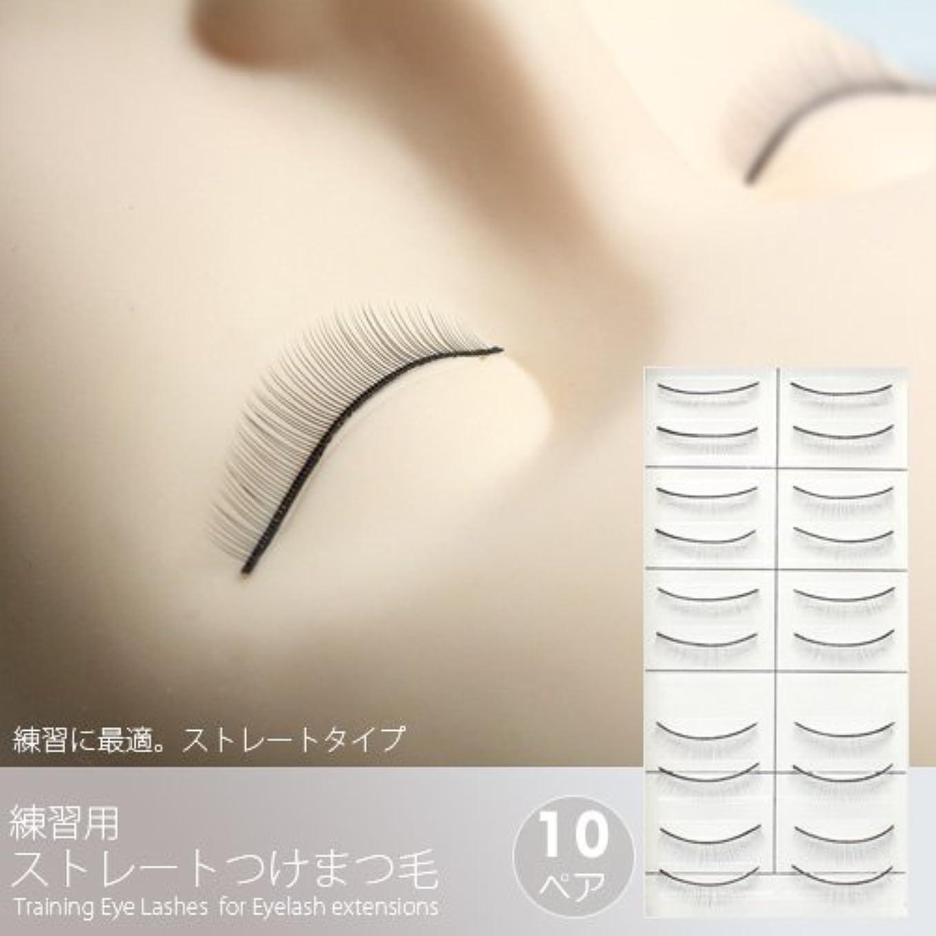大騒ぎ提案する公練習用ストレートつけまつげ(10ペア)[Training Eye Lashes ]/まつ毛エクステ商材