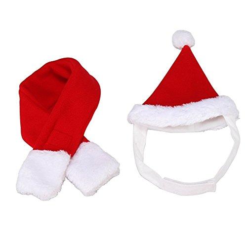BbearT®, Hut für Katzen, Hunde und Hamster, Kostüm für Weihnachten, Halloween, Feiertage