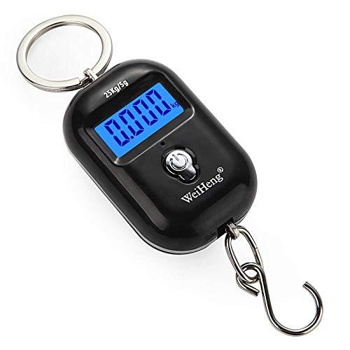 AGUOGUO Portátil Mini Mini Mano Escala de suspensión Digital for la Maleta Bolsa de Viaje Ponderación electrónica Ponderación de Equipaje Equipo de Pescado Balance (Color : A21L)