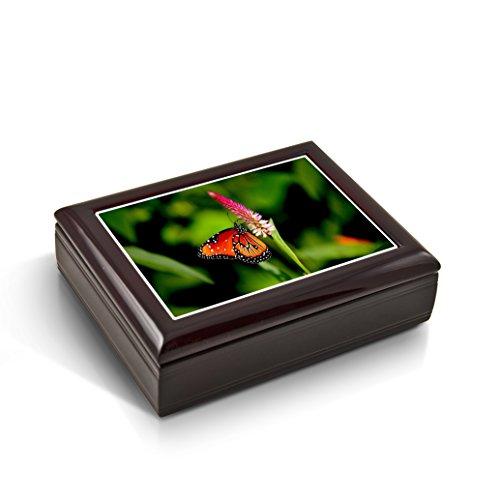 Een stralende kleurrijke Monarch Vlinder Tegel Muzikale Sieraden Box - Meer dan 400 Liedjes Keuzes - Teddy Bear's Picnic (John W Bratton) - SWISS