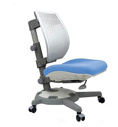 Ergodesk COMF-PRO Ultra Back Stuhl Bürostuhl Schreibtischstuhl Höhenverstellbarer Ergonomisches Design (himmelblau)