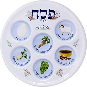 Passover Seder Plate Deluxe Quality Plastic 10  Disposable Plates  10-Pack
