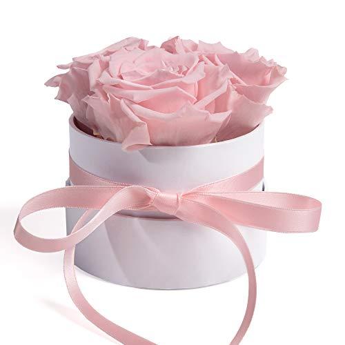 ROSEMARIE SCHULZ Heidelberg Rosenbox Flowerbox weiß rund konservierte Rosen - 3 Infinity Rosen Blumengruß Geschenk für Frauen (Rosa, Medium)