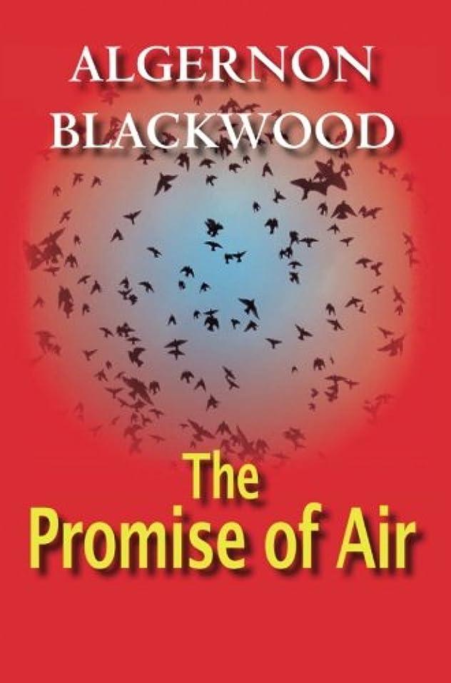 誇大妄想石の政府The Promise of Air