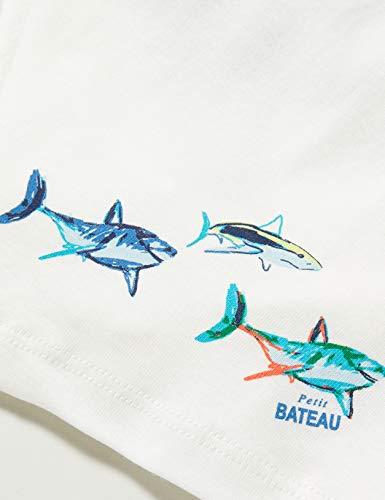 Petit Bateau 5503300 Bañador, Multicolor (Variante 1 Zga), 2 años para Niños