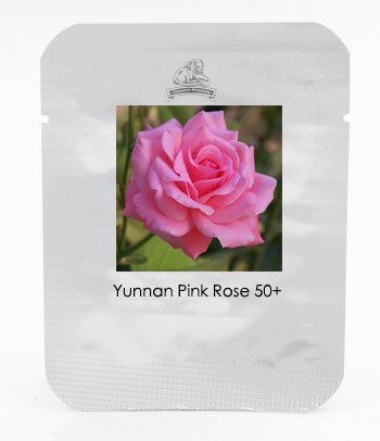1 Professional Pack, 50 graines / paquet, Yunnan Pink Rose Garden Flower Belle # NF423