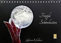 Fragile Schoenheiten - Gefrorene Seifenblasen (Tischkalender 2022 DIN A5 quer): Gefrorene Seifenblasen ... faszinierende Schoenheiten (Monatskalender, 14 Seiten )