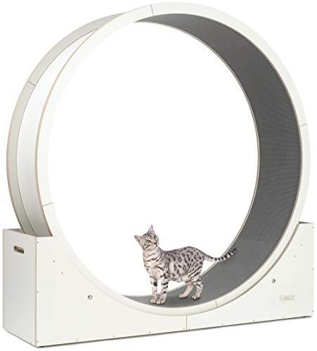 Elmato 10721 Simba XXL Katzenlaufrad komplett montiert deutsche stabile Qualität in weiß, Grauer Teppich ca. 140cm
