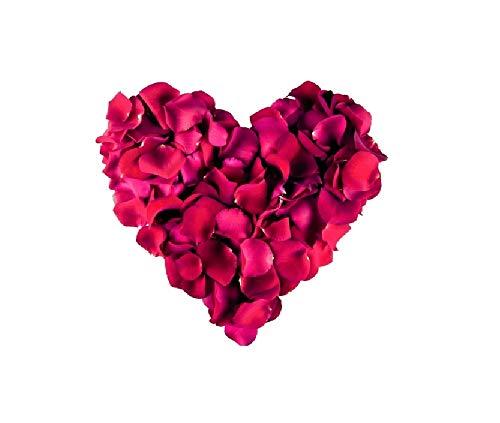 Sonnenscheinschuhe® 500 Stück künstliche Rosenblätter Bordeaux Dunkelrot Dekoration Hochzeit Liebe Romantik Rote Rose