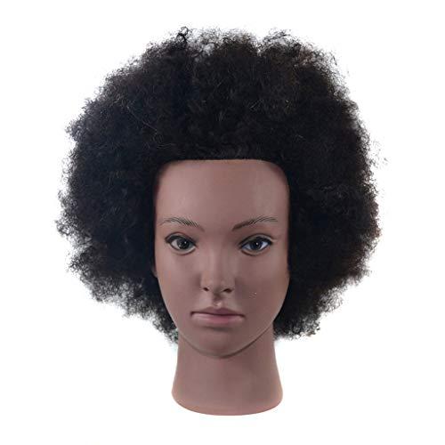 DWJDB Jefe de Formación Afro peluquería muñecas maniquí for la...