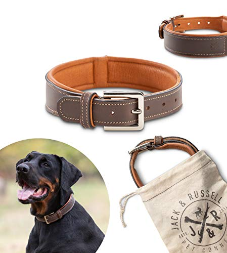 Jack & Russell Halsband Amy - Premium Leder Hunde Halsband echtes Leder Halsband braun Amy (M)