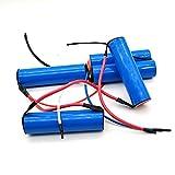 3000mAh per Electrolux pacco batterie agli ioni di litio 18 V ZB2941 ZB2904X ZB2942 ZB2943 Tipo NV144NIBRC aspirapolvere