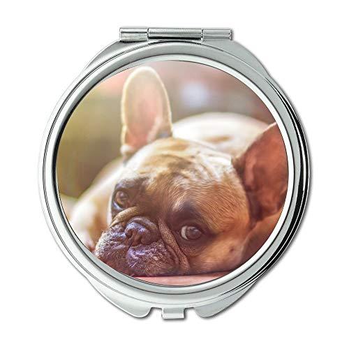 Espejo compacto, espejo de perro, bulldog mascota, canina, descanso, cansado, espejo de bolsillo, espejo portátil