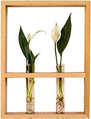 82ef84c768c SeedWorld Vases - Japanese Style Solid Wood Black Walnut Wall Vase Glass  Test Tube Hydroponic Plants