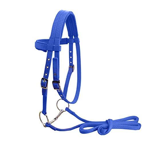 CLBING Briglia Cavezze Equestri Regolabili per Cavalli E Bretelle per Cavalli Cavezza con E Cinghia di Rinforzo Fissa,Blue-S