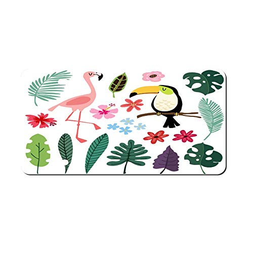 Summer Tropical Graphic Elements Toucan Front Vanity Plate,Aluminum Car Tag Holder,Licesen Plate Frame,Auto Accessory Gifts