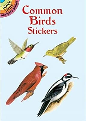Common Birds Stickers (Dover Little Activity Books Stickers)