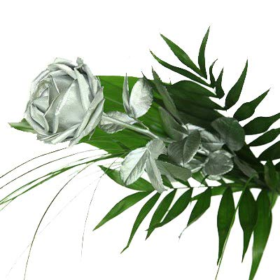 Silberne Rose inkl. gratis Kultvase