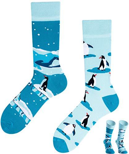 TODO COLOURS Casual Mix und Match Socken - The Penguins - mehrfarbige, verrückte, bunte Socken (39-42)