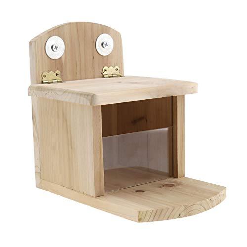 YINETTECH - Mangiatoia per scoiattolo in legno, stazione di alimentazione per decorazione giardino posteriore, motivo: boschetto
