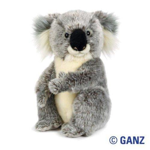 Amazon Com Webkinz Signature Koala Bear Toys Games