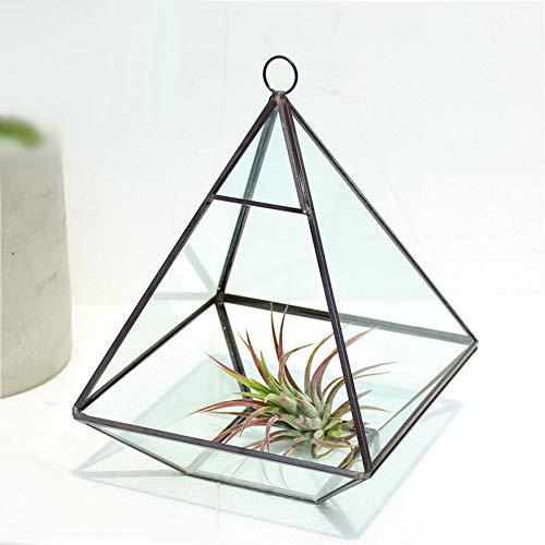 MINGZE terrario geométrico, Cristal, para Plantas suculentas, del Botánico, de la Boda, Tabla (15.5 * 15.5 * 20.5CM, Negro El Cobre)