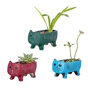 Set of 3 Ceramic Succulent Planter Pot with Drainage,Animal Flowerpot,Planting Pot Flower Pots,Small Planter Pots for Garden,Cactu,Succulent Pot,Mini Flower Pots with Holes (Plants Not Included)…