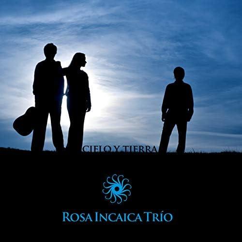 Rosa Incaica
