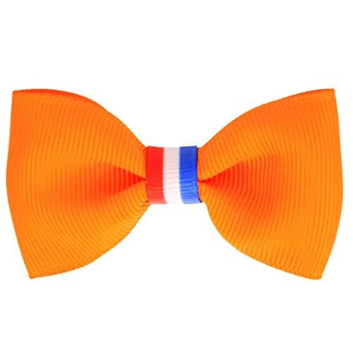 Koningsdag haarspeldje oranje nederlandse vlag | Meisje