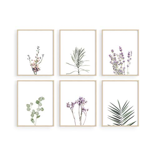 Floral Prints and Plant Posters - By Haus and Hues Set of 6 Botanical Prints and Floral Wall Art | Plant Prints | Plant Wall Art | Flower Wall Art | Plant Botanical Prints Set (8'x10', UNFRAMED)