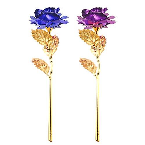 ONEVER 2pcs plaqu¨¦ Cadeau Creative Saint Valentin 24K Or Rose Fleur Romantique pour Les Amoureux Girl Friend (Bleu + Violet)