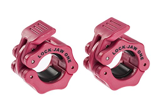 Lock Jaw Standard 2,5cm 25mm BARBELL Halsbänder pink