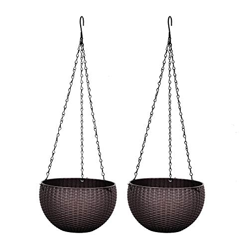 Rocinha 2 Pack Indoor Hanging Planters