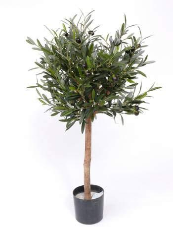 artplants.de Set de 2 x Olivo Artificial Wynona, Tronco Natural, Frutos, 75cm - Pack de oliveras sintéticas - Conjunto de aceitunos Falsos
