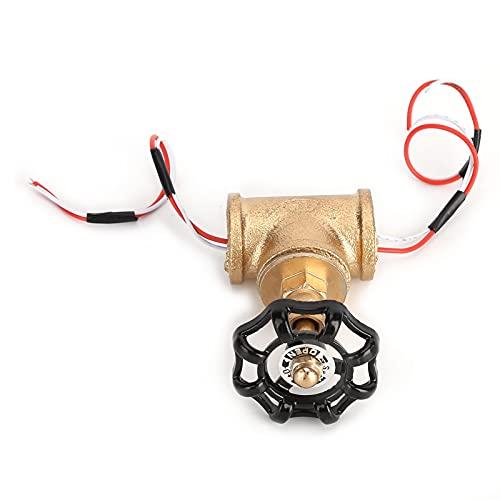 KASD Interruptor de luz, fácil de Usar Interruptor de luz Steampunk de Alta practicidad para Luces de tubería u Otra iluminación Adecuada para Tales interruptores