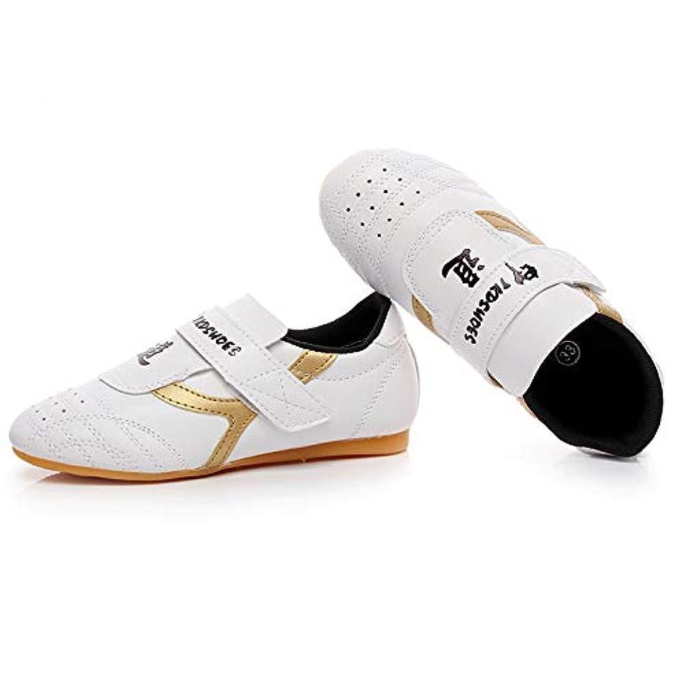 降臨の前で救出Man&Y プロの子供たちテコンドー靴滑り止めソフトオックスフォードスポーツスニーカー子供男性女性プロフェッショナルレスリング格闘技トレーニングキックボクシングシューズ (Color : Gold, Size : 26)