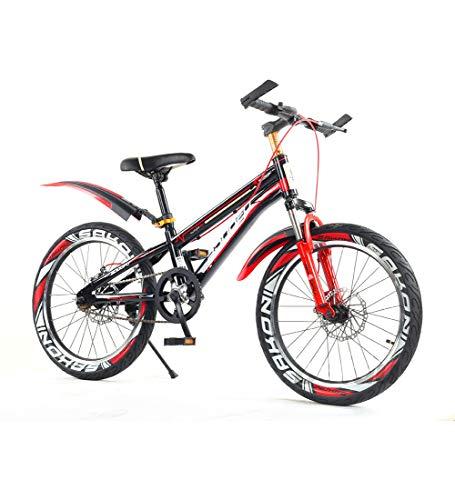 SJSF Y Bici 16/18/20 Pulgadas con Frenos Bicicleta Infantil para Niños Y...