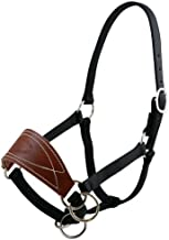 Outfitters Supply TrailMax Mule Halter with Natural Oil Brown Harness Leather Noseband & Triple ply Black Nylon Webbing, Available in Small, Medium & Large