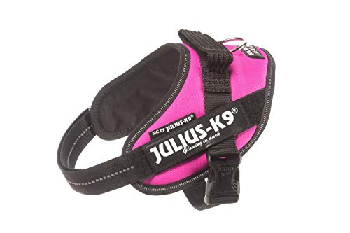 Julius-K9, 16IDC-DPN-M, IDC Powerharness, dog harness, Size: Mini, Dark Pink