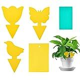 LOMYLM Set di 70 trappole per mosche, adesivi gialli, ideali per combattere le mosche della frutta, i pidocchi, le mosche bianche per terriccio, le piante da interni a casa o sul balcone