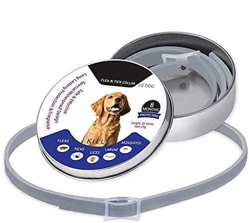 Collar Antipulgas Y Garrapatas para Perros/Gatos, Protección De 8 Meses, Collar Antipulgas para Perros con Aceite Esencial Antiparasitario Natural, Impermeable Ajustable 25 Pulgadas