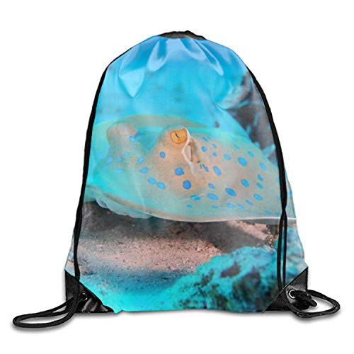 uykjuykj Sacs à Dos,Basic Drawstring Cute Rays Bluesea Island Tote Cinch Sack Promotional Backpack Bag 10 Patterns Available Cute Rays bluesea island2 Lightweight Unique 17x14 in