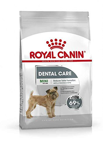 ROYAL CANIN Mini Dental Care - 3 kg
