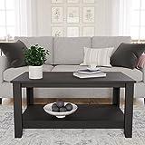 Cecilia Modern Farmhouse Coffee Table (Ash & White)